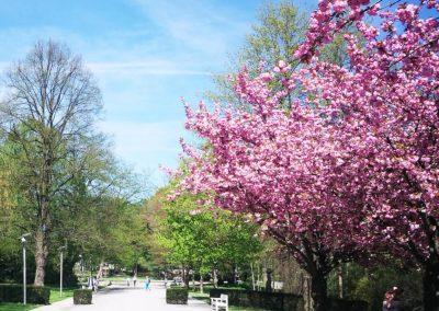 csm_kurort-westfalen-bad-sassendorf-kur-promenade-hotel-der-schnitterhof_550d862d86